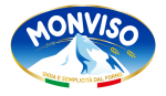 MONVISO GROUP S.R.I.